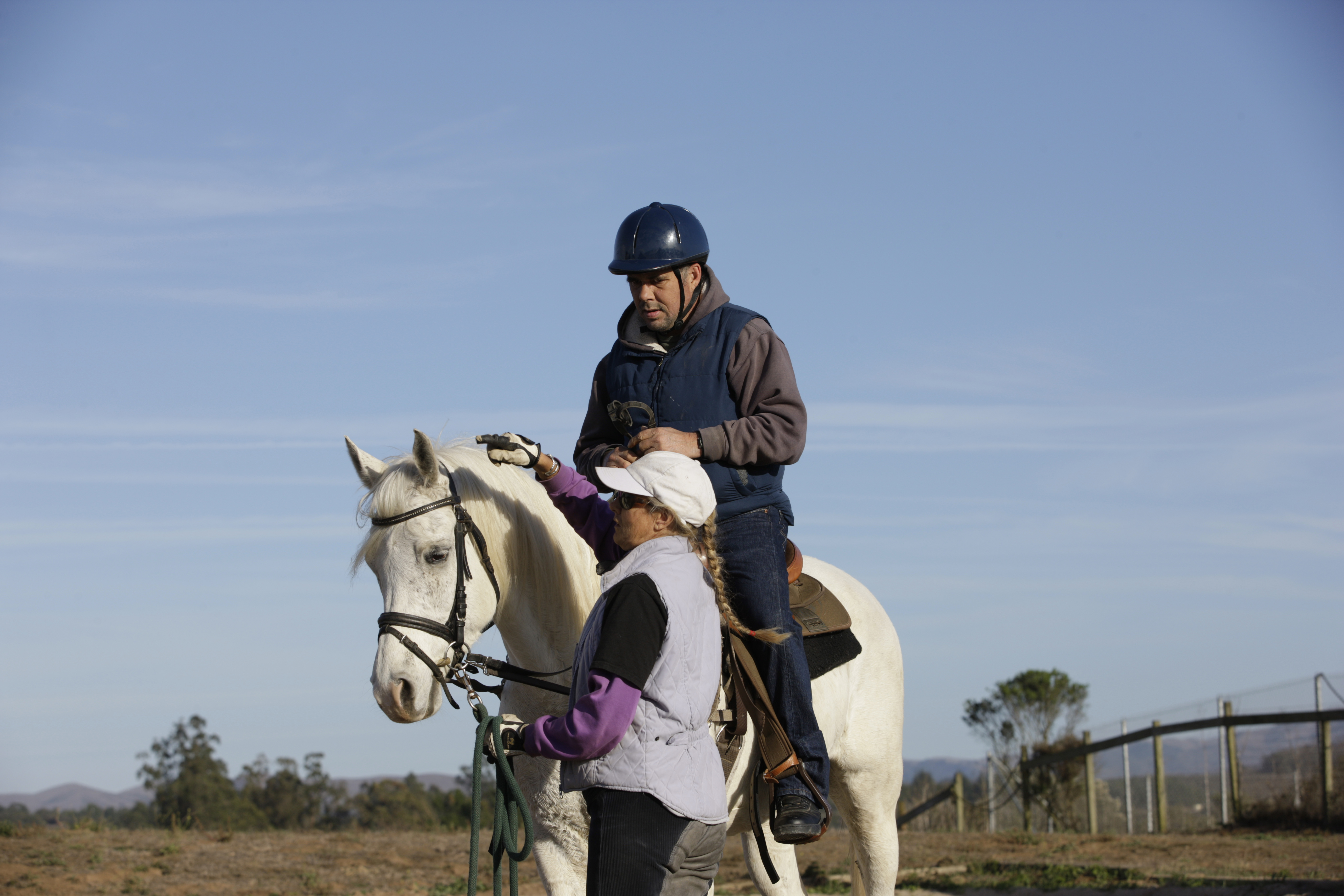 Equine therapy partners