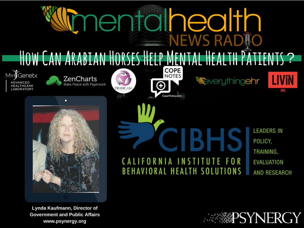 Lynda Kaufmann interviewed on Mental Health News Radio
