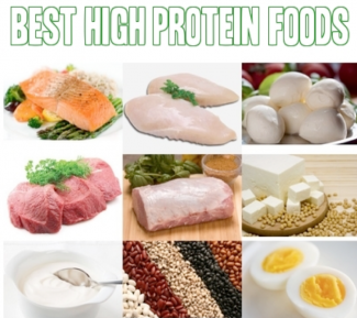 best sources of protein