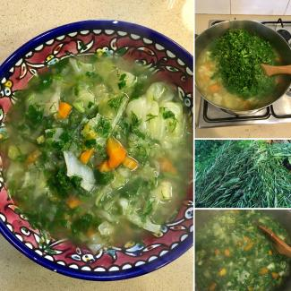 Fresh herbs and vegetable soups!